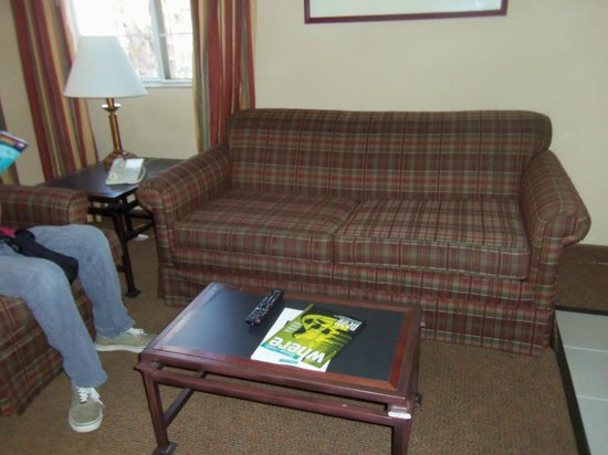 Hampton Inn & Suites Santa Ana/Orange County Airport: Living area - not a gorgeous sofa, but adequate.