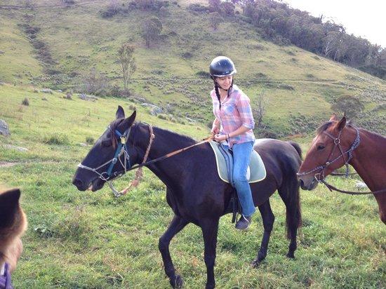 Werriberri Trail Rides: :)