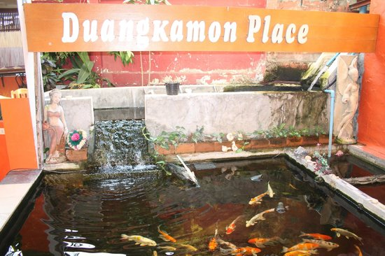 Phusiriplace Chiang Mai: attractive water feature