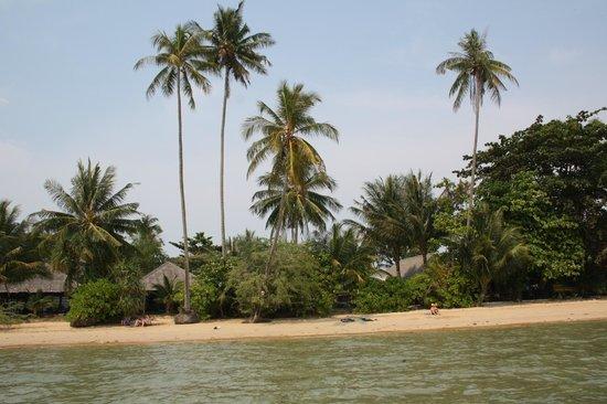 Monkey Island Resort: tropical island