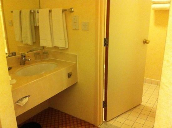 Cheshunt Marriott Hotel: outside sink and bathroom door.