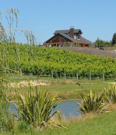 Pine Hill Lodge: Property_photo