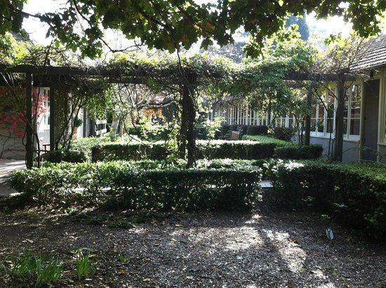Links House: Rear Garden