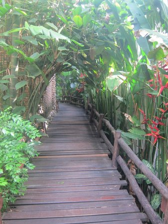 Somkiet Buri Resort: A walkway to some of the rooms