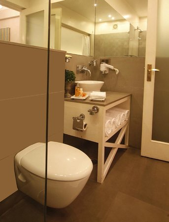 Hotel Ajanta: Washroom