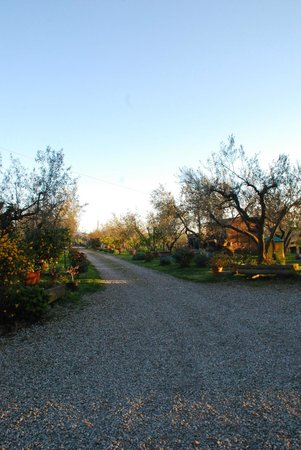 Agriturismo Le Caselle: Totale relax