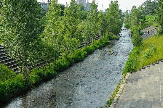 Kotonihassamu River
