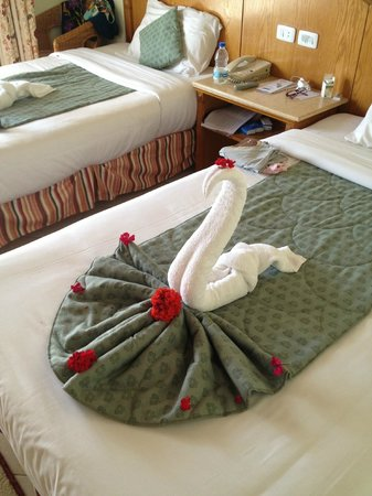 SENTIDO Oriental Dream Resort: cigno