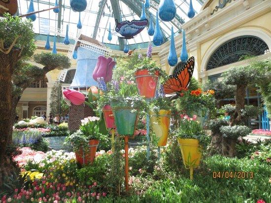 Spring Celebration Picture Of Bellagio Conservatory Botanical Garden Las Vegas Tripadvisor