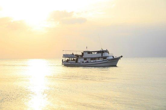 Lanta Palm Beach Resort: gorgeous beach