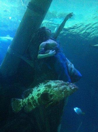 SEA LIFE Oberhausen: in fondo al mar...