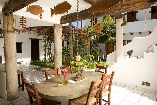 Posada La Terraza: terraza10