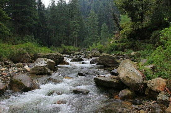 The beautiful stream