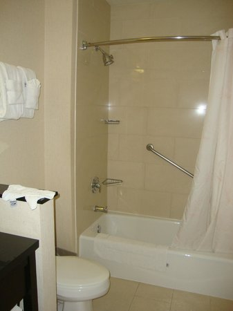 Comfort Inn & Suites Zoo / SeaWorld Area: Ducha