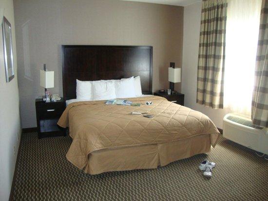 Comfort Inn & Suites Zoo SeaWorld Area: Habitacion con una cama grande