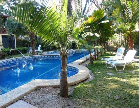Giardino Tropicale : Pool