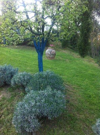 Torraccia di Chiusi: Blue