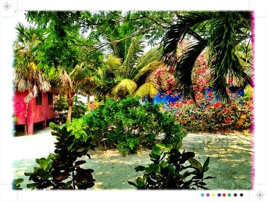 Matachica Resort & Spa: view from your private hammock