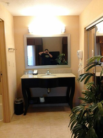Hampton Inn & Suites Laurel : Bathroom sink and mirror