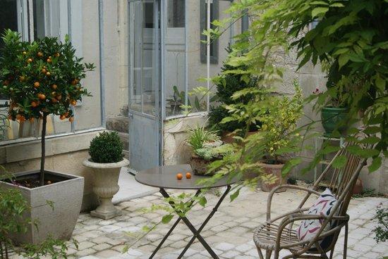 La maison du Baloir : Le patio