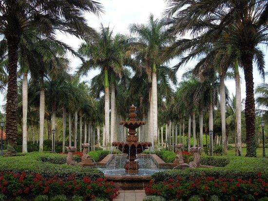 The Ritz-Carlton Golf Resort, Naples: Hotel Grounds