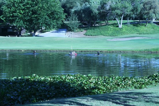 San Vicente Golf Course with ponds and ducks.