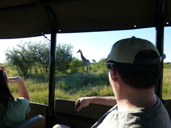 Lukimbi Safari Lodge: This is how close you get!