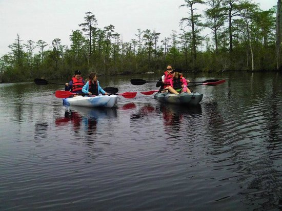 Adventure Kayak Tours Day Tours