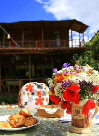 Baykus Bungalows: You can enjoy our garden all day long.