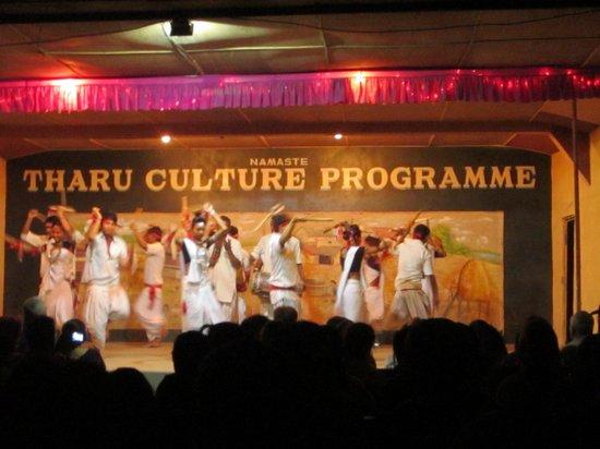 Hotel Rainforest: Cultural Show