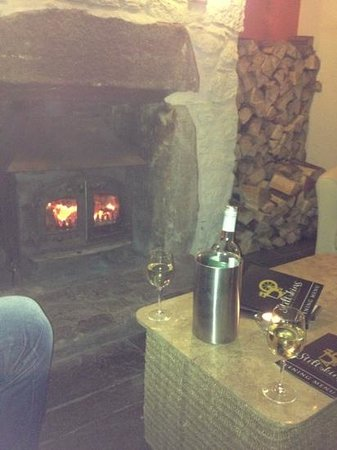 Stiltskins Bar and Restaurant: wine by the fire on a chilly rainy night