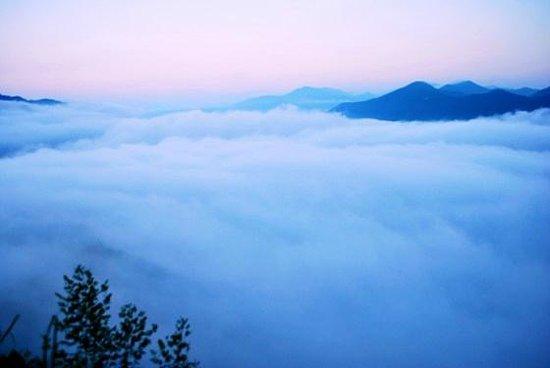 Kumano, Japonya: 朝の棚田 雲海の下に