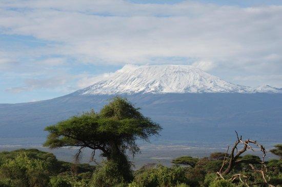 Southern Palms Beach Resort: Kilimandjaro