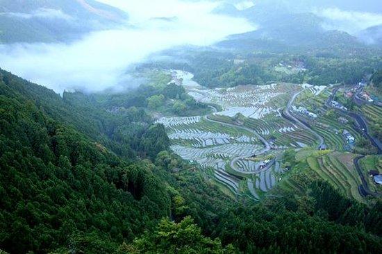 Maruyama Senmai Rice Field: GWの棚田