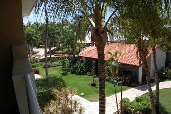Dreams Palm Beach Punta Cana: grounds view from room