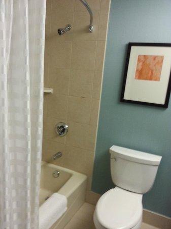 Hyatt Place Milwaukee Airport : Nice, clean bathroom.