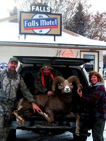 Falls Motel: SCORE! Hunt of a lifetime.