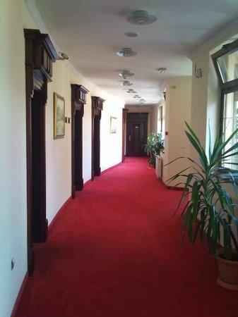 Hotel Villa Majur : hall