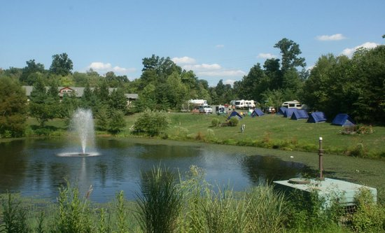 Cherry Hill Park: Pond and group tent site