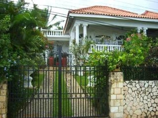 Paradise Palms Jamaica Tours: My Home Away from Home