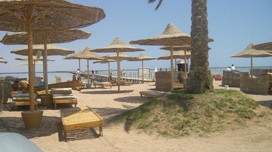 Royal Albatros Moderna Sharm el-Sheikh: Great hotel