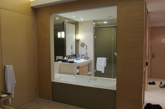 Hyatt Regency Hong Kong Sha Tin: the bathroom with blinds that you can pull down so it becomes private! :)