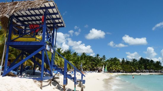 Viva Wyndham Dominicus Beach: Plage
