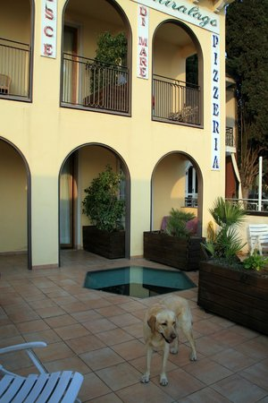 Hotel Miralago: Balcone della camera 105