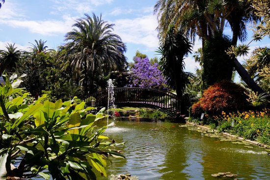 Hotel Botanico & The Oriental Spa Garden: lake again