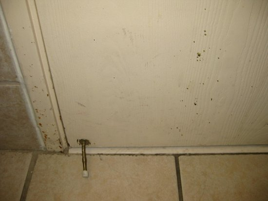 Elvis Presley's Heartbreak Hotel: Bathroom Door Inside
