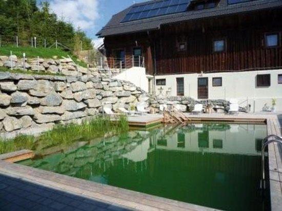Art-Lodge in den Nockbergen: Pool echt cool ;-)