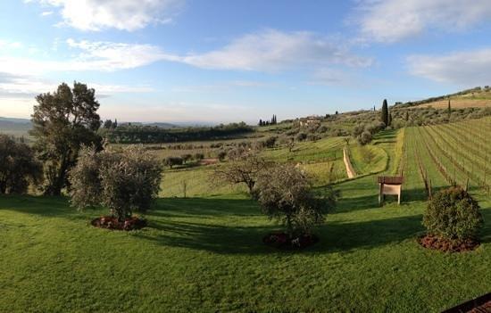 Agriturismo Costa degli Ulivi: panorama