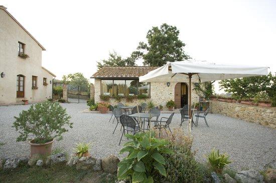 Podere Sant'Elena: giardino