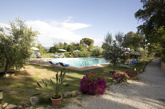 Podere Sant'Elena: vista piscina